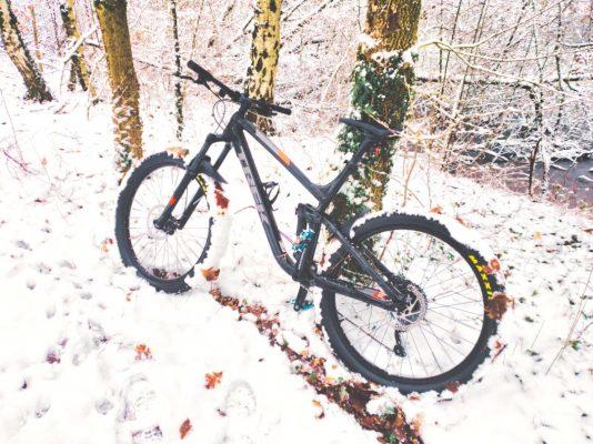 Zeigt Trek Fuel EX 5 Mountainbike im Schnee an einen Baum angelehnt.